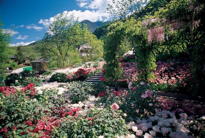 Giardini Di Castel Trauttmansdorff A Merano Which Magazine